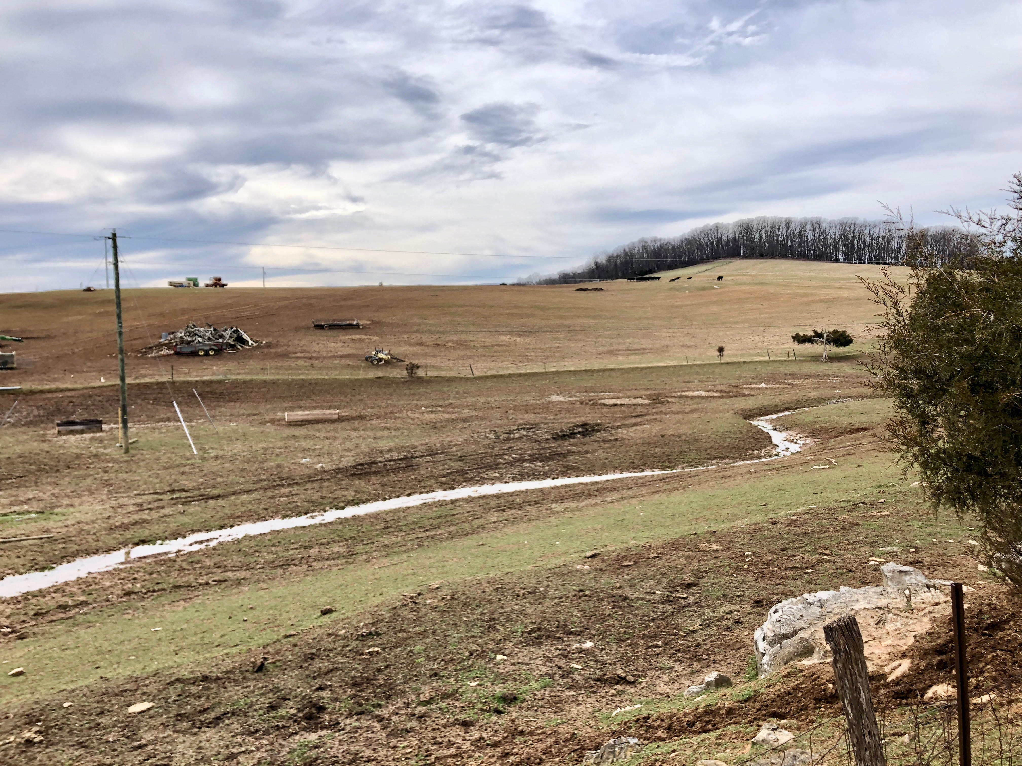Augusta County farmer Scott Burtner has struggled with flooded fields and sick animals in spring 2019 following an exceptionally wet fall and winter.