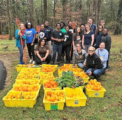 4-H teens learn importance of giving back through gleaning
