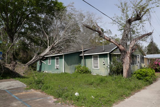A home in Gretna, Fla. with an uprooted tree resting on the roof Wednesday, March 13, 2019. Gadsden County continues to recover from Hurricane Michael which hit the Panhandle in Oct. 2018.