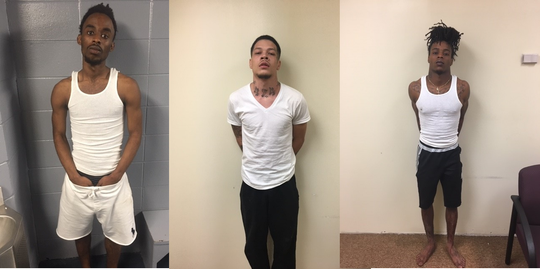 From left, Trayvontaye Cheesmon, 19, Travion Turrell, 21 and Antonio Roulhac, 20 were arrested Tuesday after they were spotted driving by a fenced pasture in the Hardaway Community shooting at grazing horses.