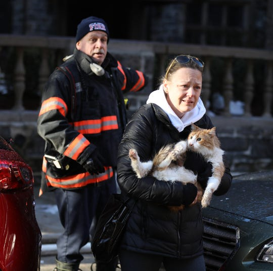 Firefighters Rescue Cats From Fire