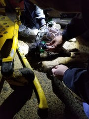 Empress EMS saved a cat from a fire in Yonkers.