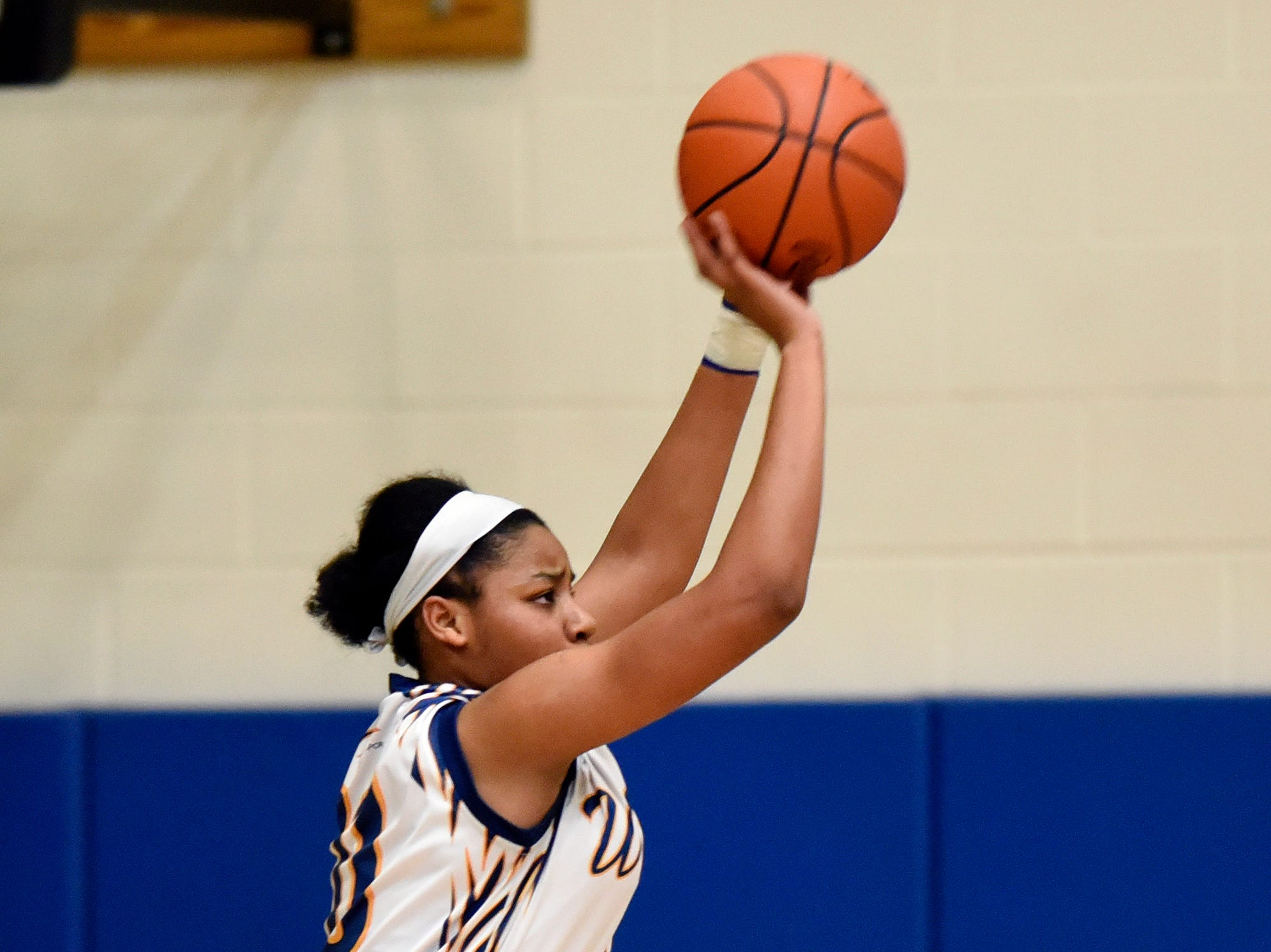 Wayne Memorial guard Jeanae Terry shoots against Ann Arbor Pioneer in the first quarter.