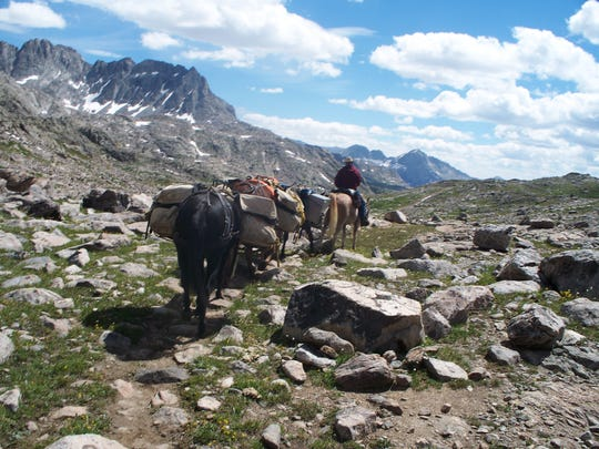 Jim Haggerty leads a string of horses along the Continental Divide National Scenic Trail.