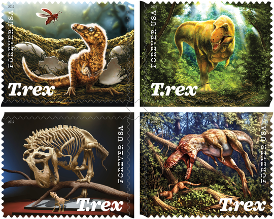 """A T.rex discovered by Kathy Wankel along Fort Peck Reservoir in 1988 has been dubbed """"The Nation's T.rex"""" as it will soon debut in a new Smithsonian exhibit. The T.rex will be on a new stamp set with original artwork by Julius T. Csotonyi, a scientist and paleoartist."""