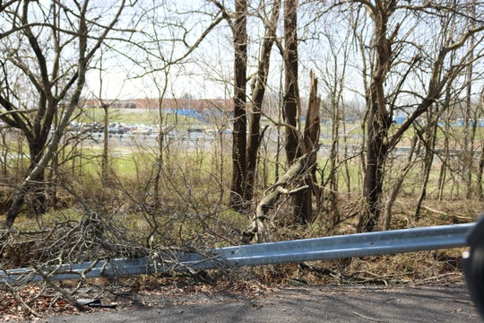 Trees and branches toppled over after the storm near the Union County High School seen in the background.