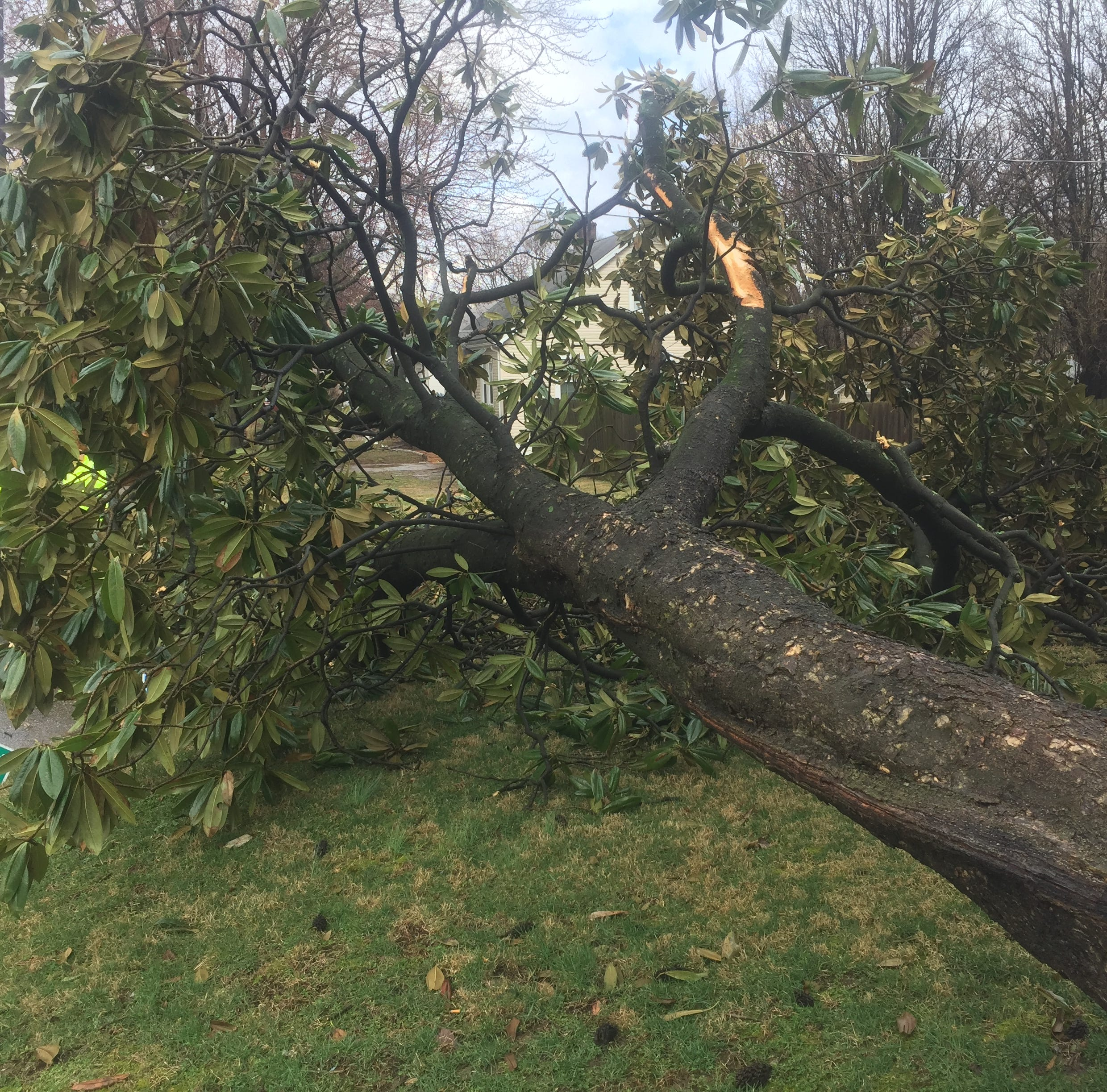 Nine tornadic systems blew through Henderson County Thursday