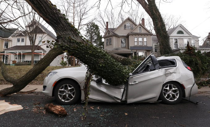 A van was crushed due to high winds that toppled a tree on Hebpurn Avenue in the Highlands. The owner was out of town to spend the final days with her dying father, who passed early Thursday morning. March 14, 2019