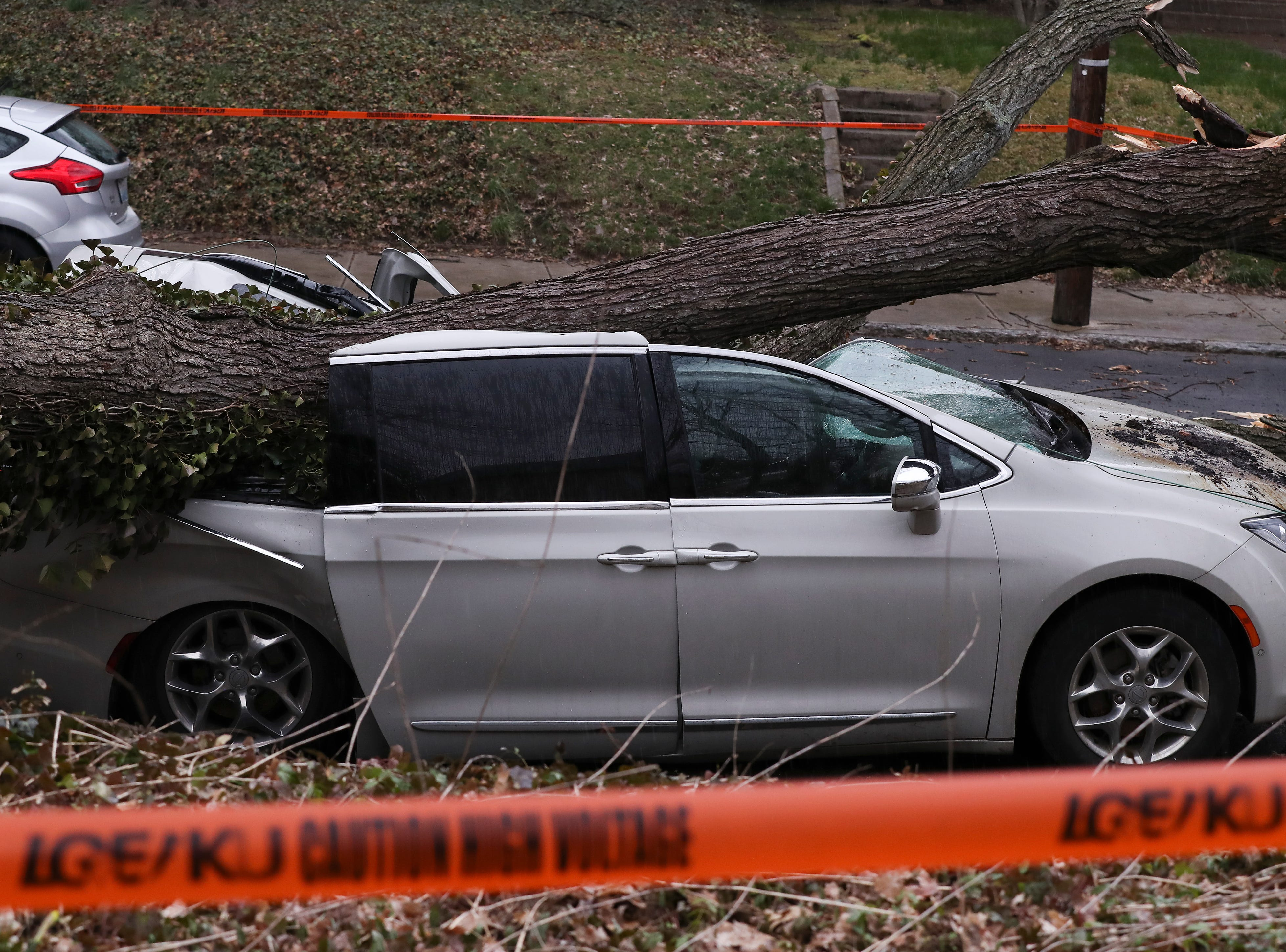 A van was damaged due to high winds that toppled a tree on Hebpurn Ave. in the Highlands.  The owner was out of town to spend the final days with her dying father who passed early Thursday morning. Mar. 14, 2019