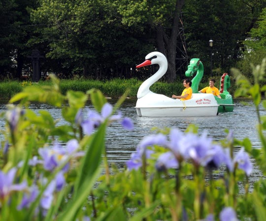 You can now rent white swan paddle boats at Milwaukee's Veterans Park.