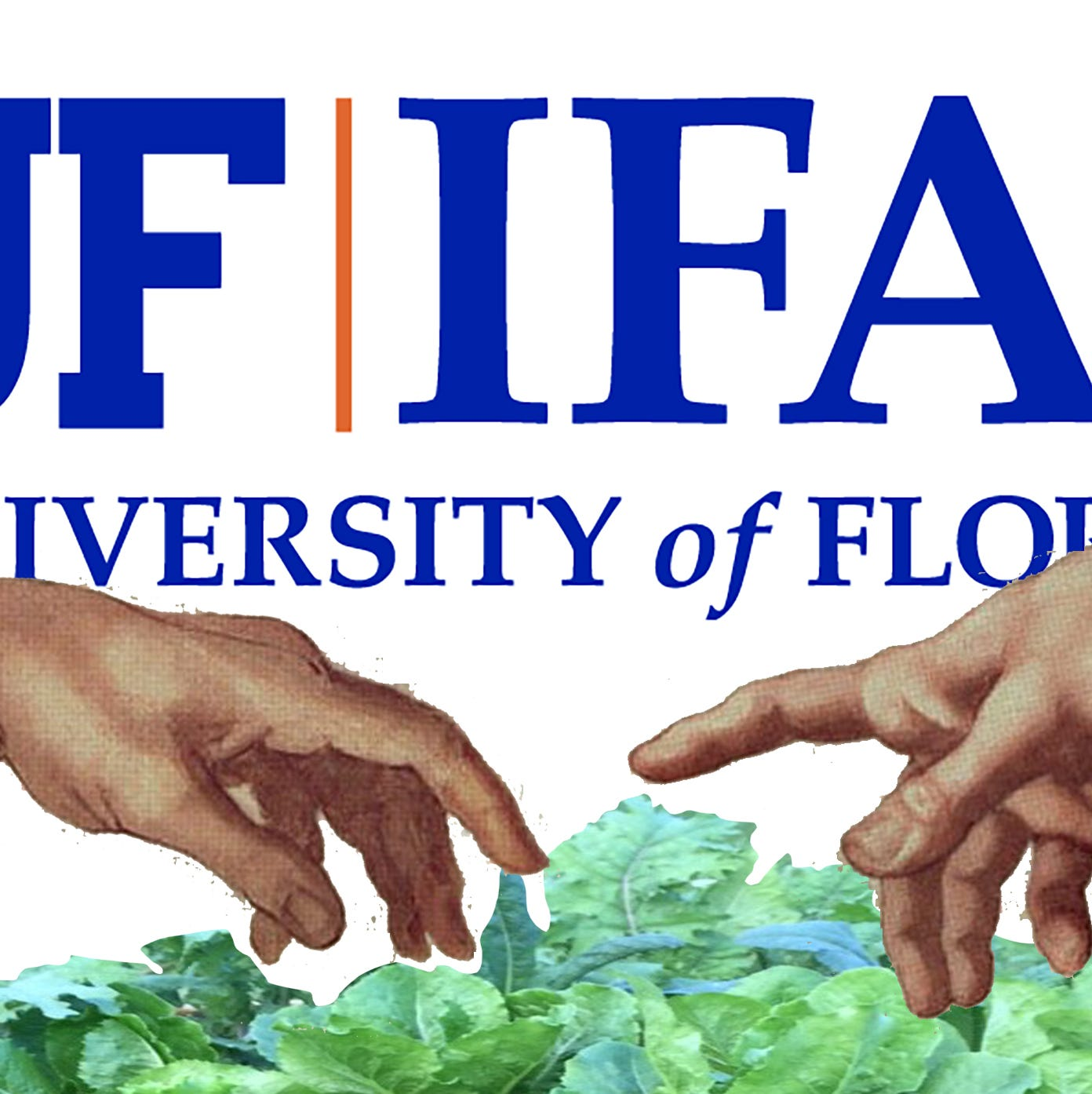 Marlette: UF/IFAS offers the gurus of gardening enlightenment