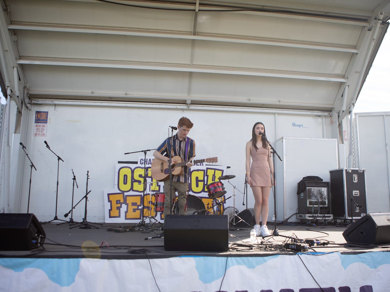 There was plenty of music to check out at the Chandler Ostrich Festival on Sunday, March. 10, 2019.