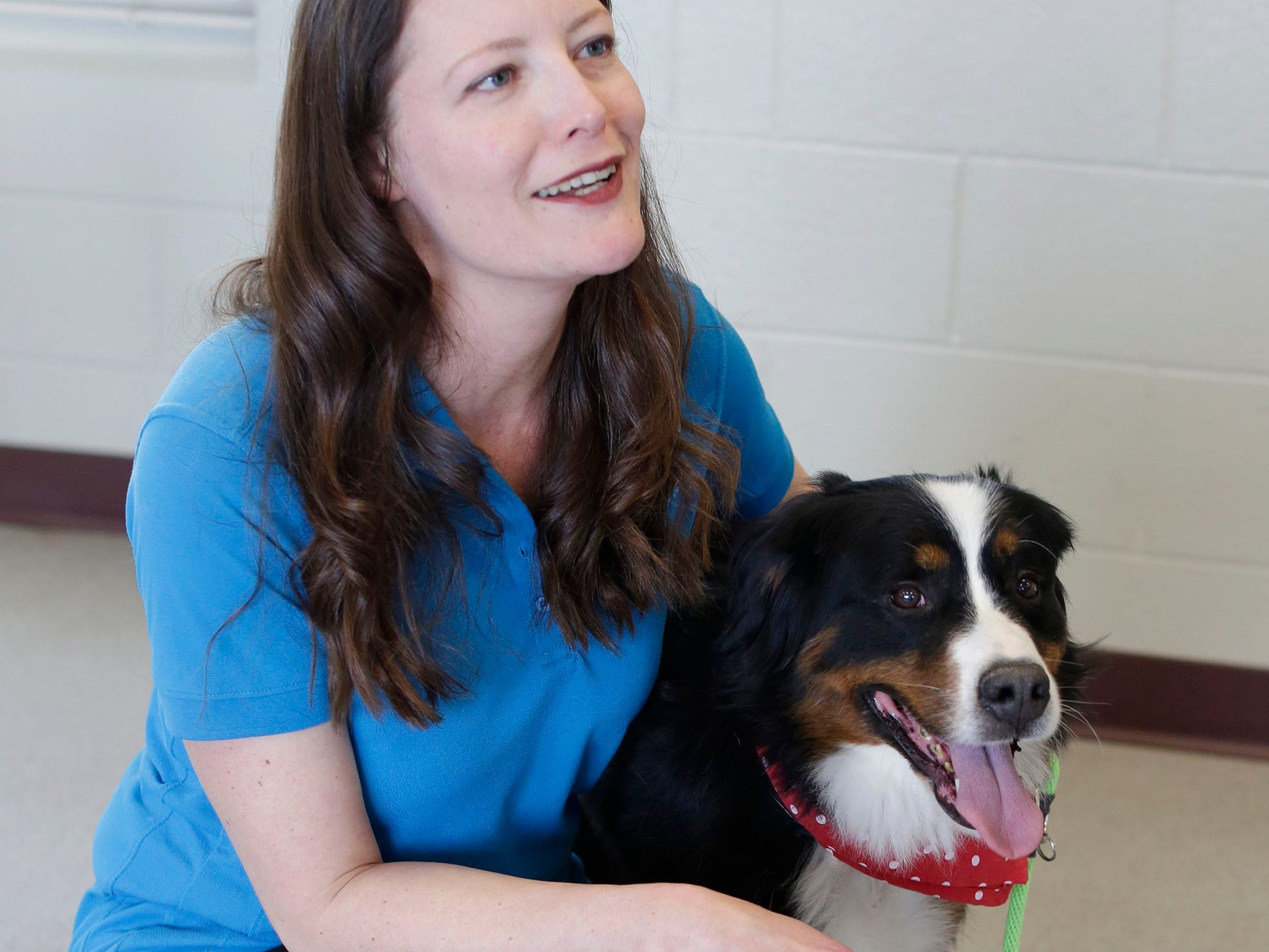 Wisconsin Humane Society's Angela Speed crouches by a Burmese Mountain dog named Pru before a press conference, Thursday, March 14, 2109, in Saukville, Wis. The dog, who will all eventually be adopted out, was part of the 36 live dogs that were seized in 2017 from Kinship Companions, a kennel that has been since shut down.