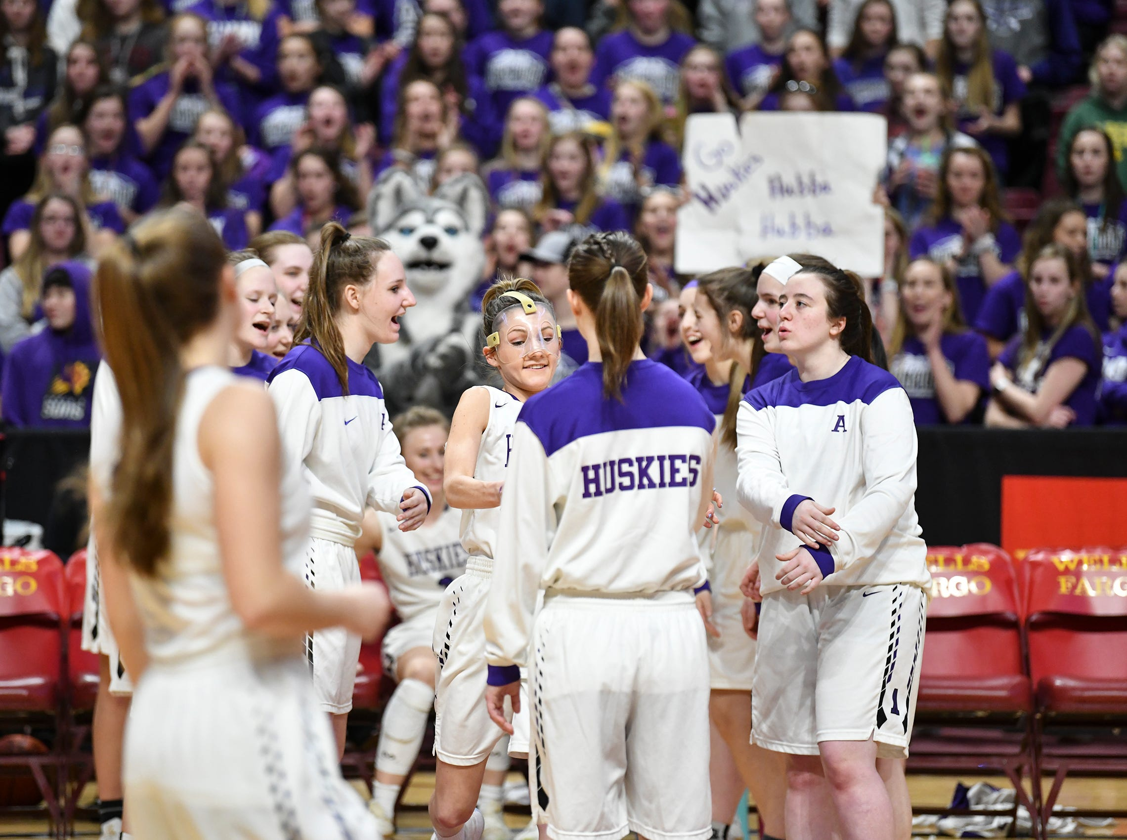 Albany players are introduced during the state Class 2A quarterfinals game Wednesday, March 13, at the University of Minnesota in Minneapolis.
