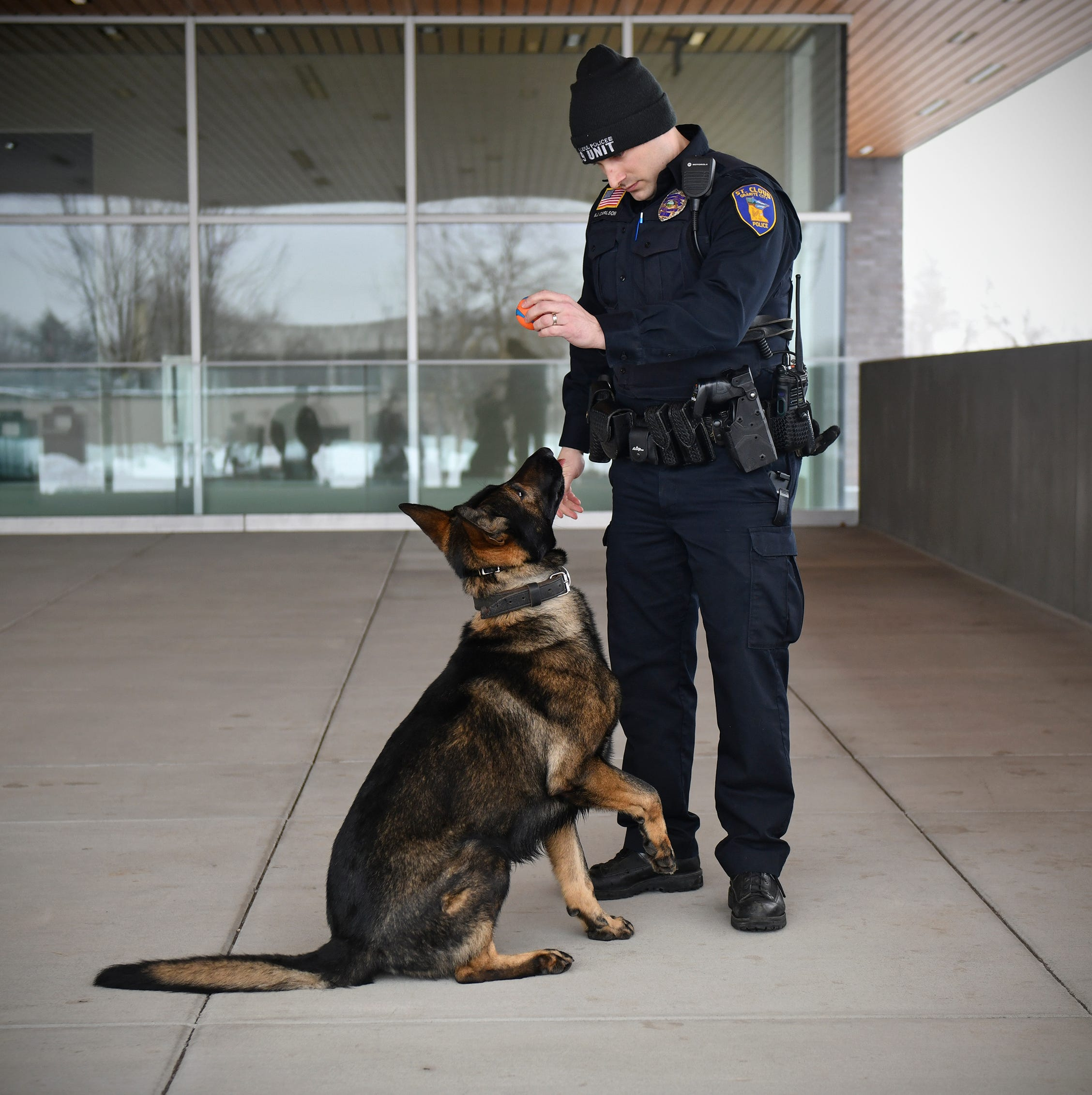 St. Cloud police K-9 Riggs is ready to detect explosives after 8 weeks of training