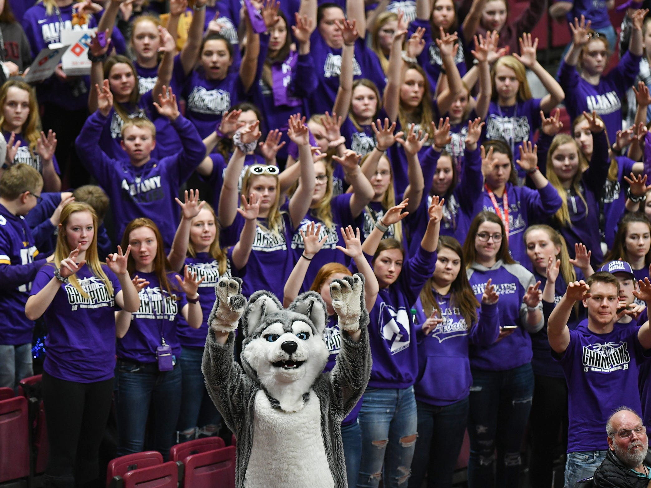 Albany fans cheer for their team during the state Class 2A quarterfinals game against Holy Family Catholic Wednesday, March 13, at the University of Minnesota in Minneapolis. Albany won 60-49 to advance in the tournament.