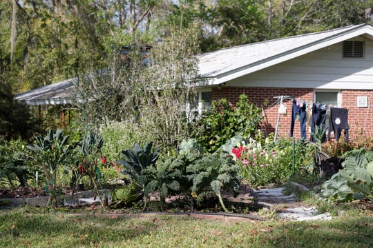A home in Tallahassee, Fla. with a garden in the front yard Thursday, March 14, 2019.
