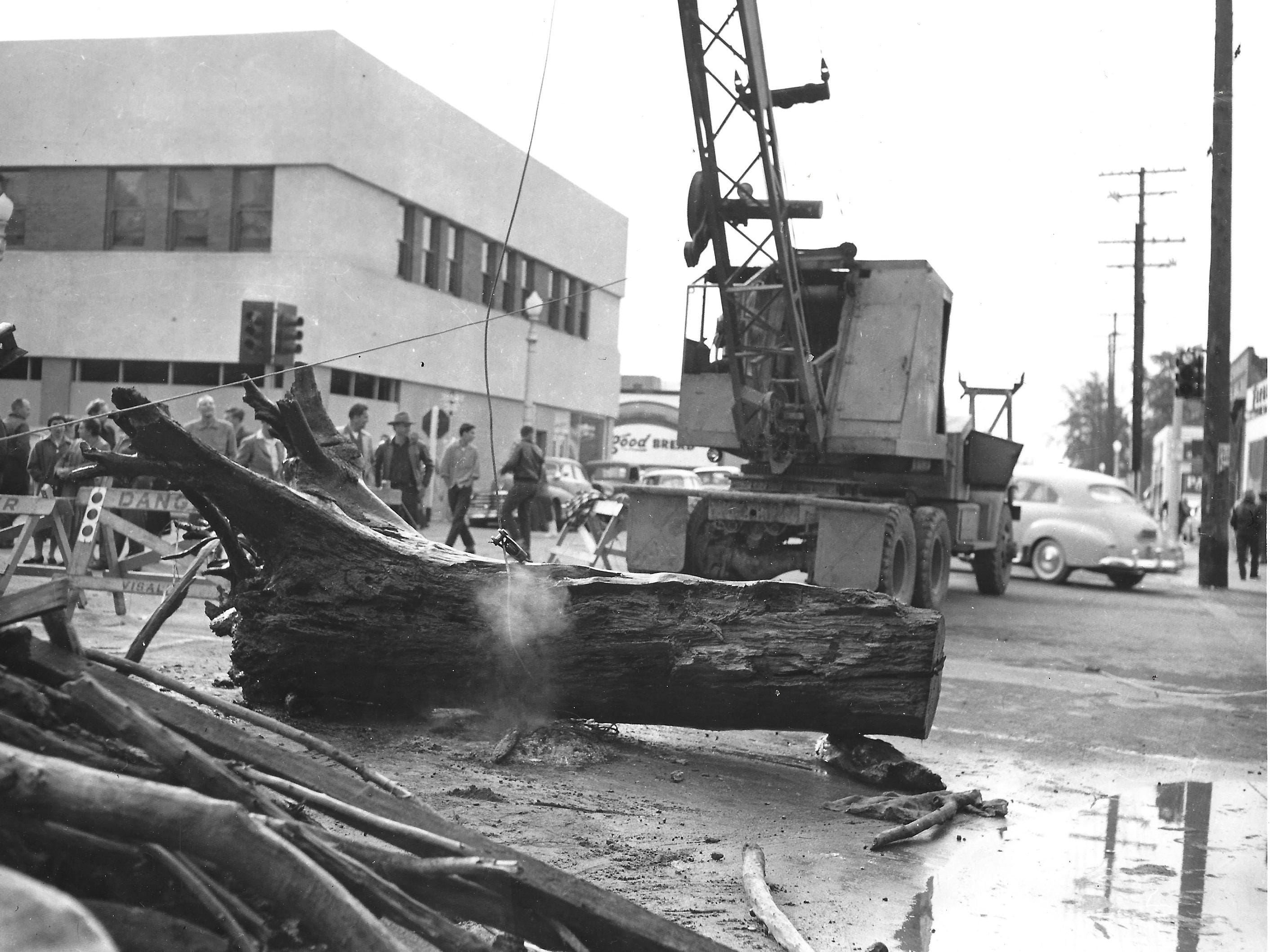 A photo shows the huge log that plugged Mill Creek during the 1956 flood, which was removed from a section under Center Street just east of Court Street.