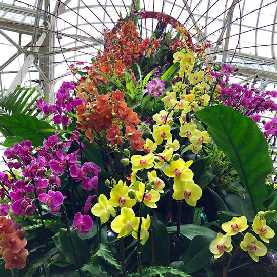 A Supertree at The Orchid Show at the NY Botanical Garden continues through April 28.