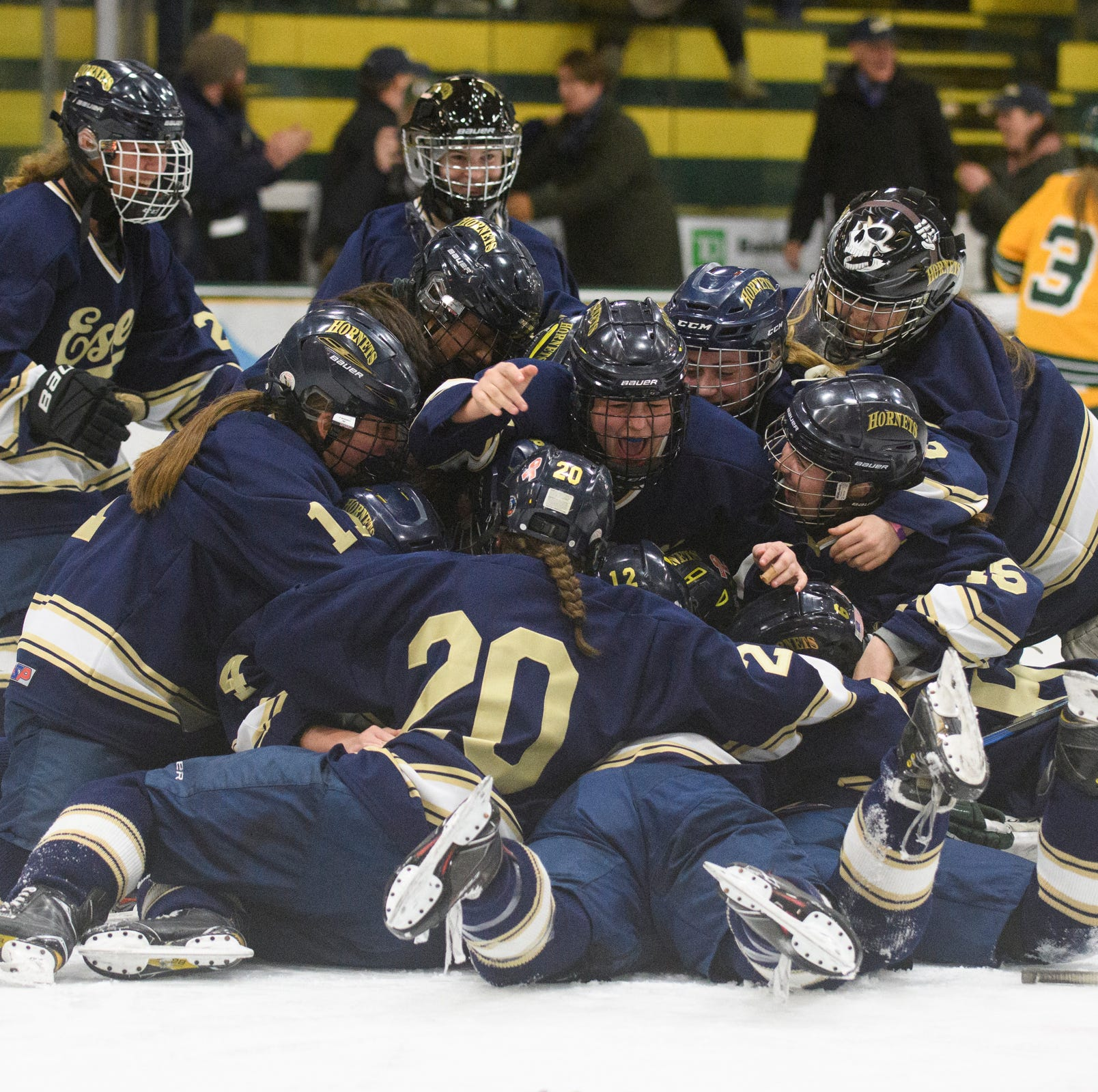 Essex dethrones BFA for Division I girls hockey crown