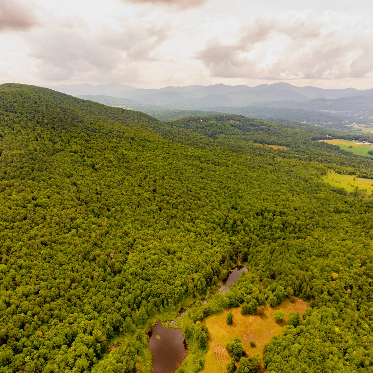 Land trust set to buy 750 acres in Stowe after anonymous $5 million gift