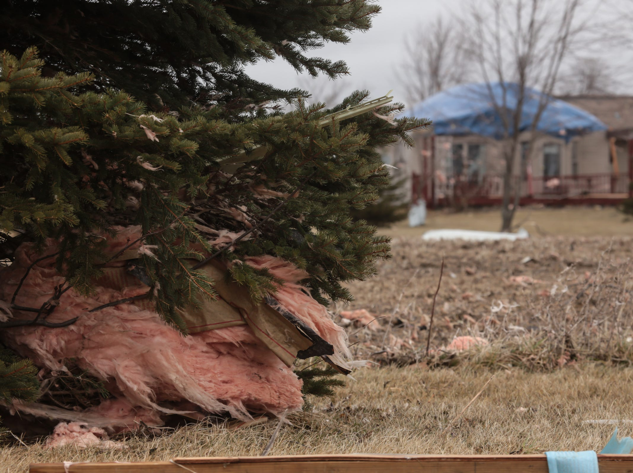 Insulation from a damaged home in Vernon is seen in trees on Friday, March 15, 2019 around a house that was damaged after a tornado came through Shiawassee County.