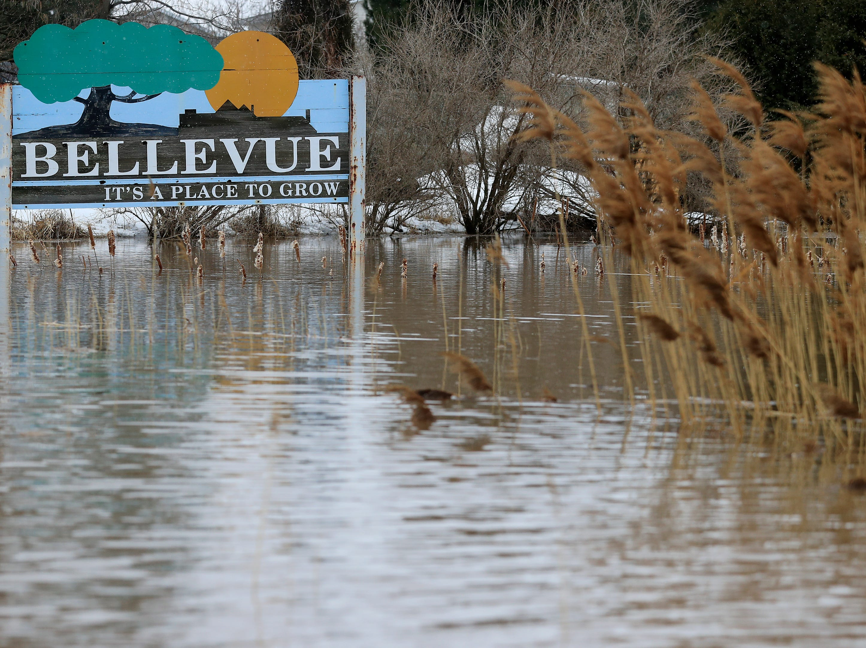 East river floodwaters are shown on Friday, March 15, 2019 in Bellevue, Wis.