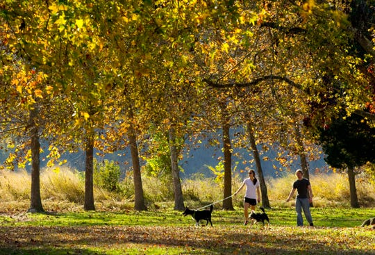 """University of Tennessee veterinary students Annie Galloway and Nick Gunter take in the fall colors Tuesday in Sequoyah Hills Park. """"It's a beautiful fall day. On a day like this we're usually in class,"""" said Galloway. (SAUL YOUNG/NEWS SENTINEL)"""