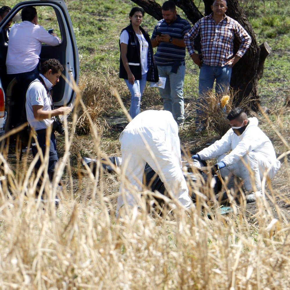 México: Hallan 19 bolsas presuntamente con restos humanos