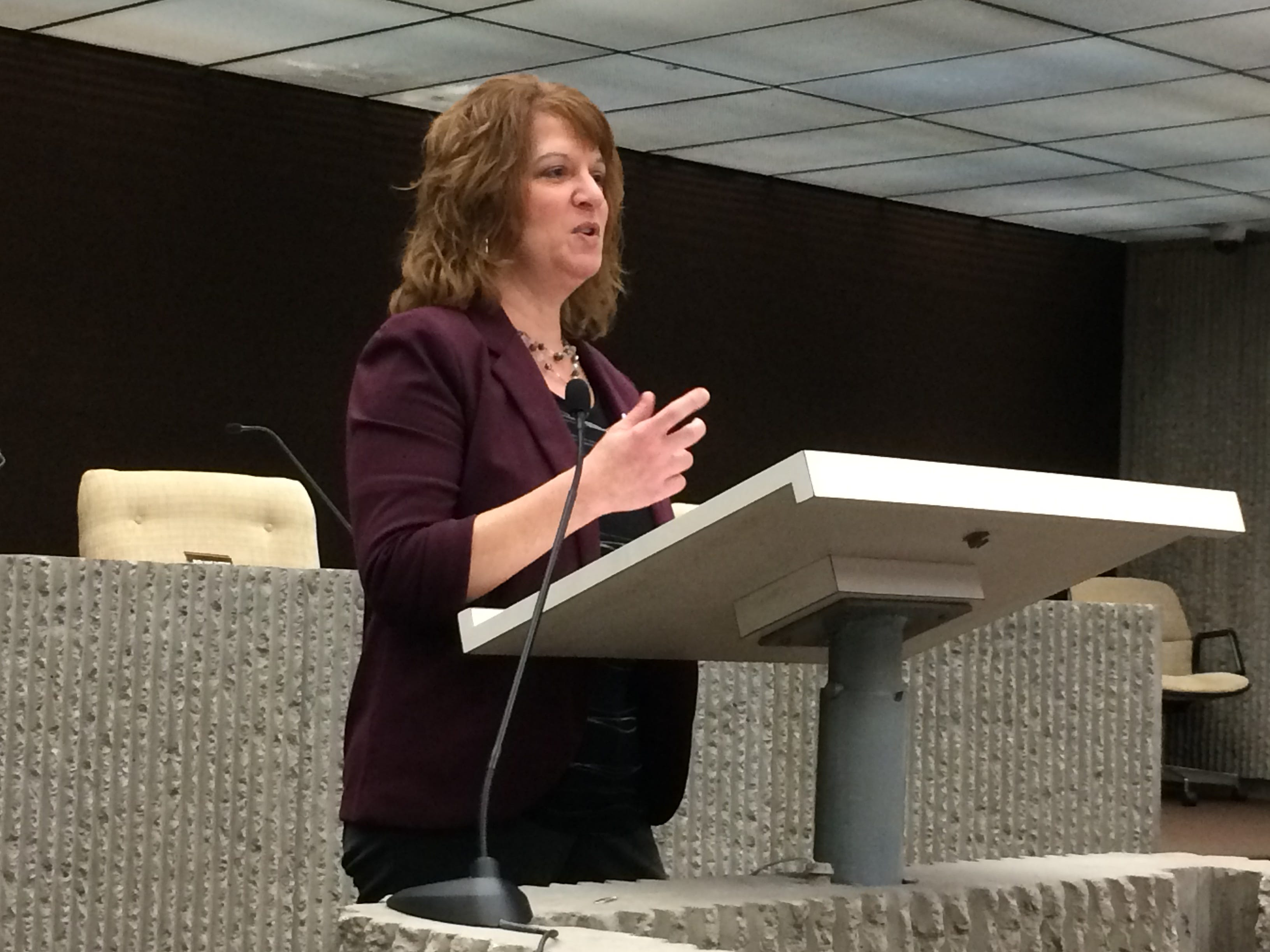 Gina Glass, co-director of Wayne County's JDAI, speaks during an expanded Juvenile Detention Alternatives Initiative steering committee meeting Wednesday.