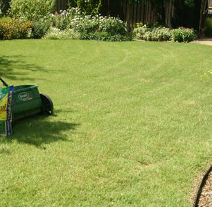 Want a bright and healthy lawn? Here is when to fertilize in San Angelo