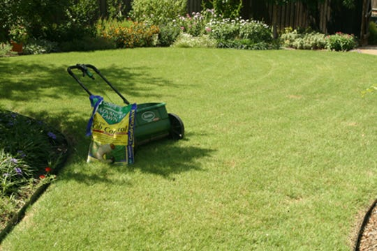Texas A&M's AgriLife Extension Service offers several publications to help you establish and maintain a healthy lawns.
