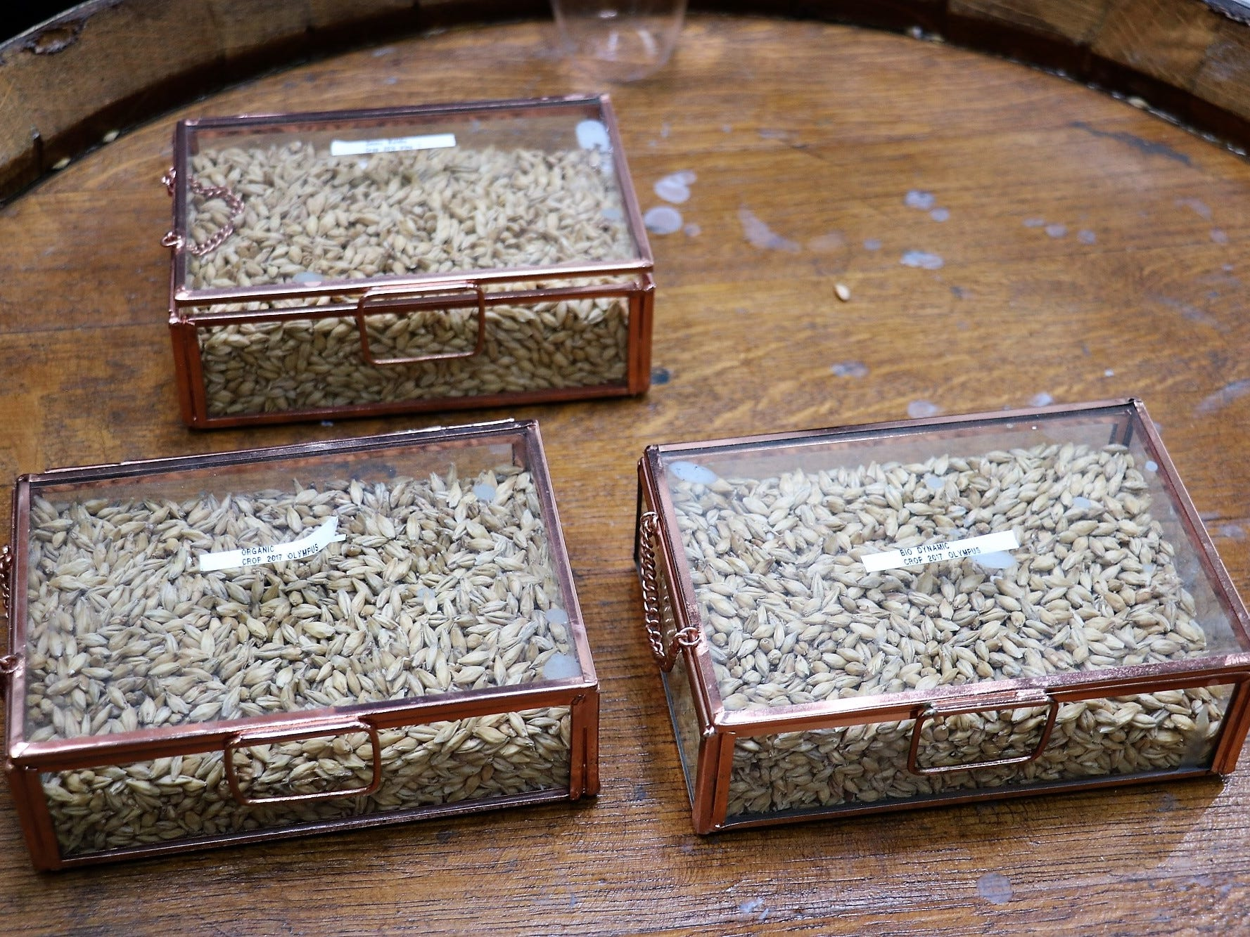 A collection of barley samples, including organic and biodynamic barley, is kept on display. The distillery retains samples of every batch of barley used for production so far.