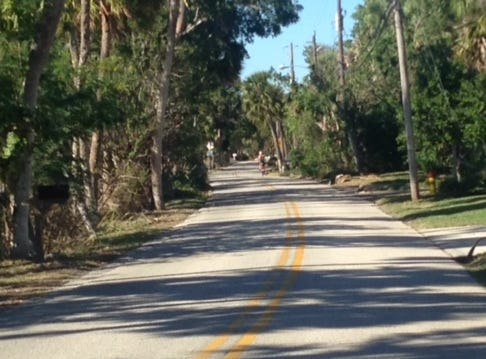 Scenic view from Tropical Trail on Merritt Island. Bicyclists, joggers and vehicles share the roadway.