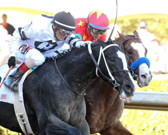 Long Range Toddy  and jockey Jon Court (left) pass Improbable and jockey Drayden Van Dyke in the final strides to win Division One of Saturday's Rebel Stakes at Oaklawn Park in Hot Springs, Ark.