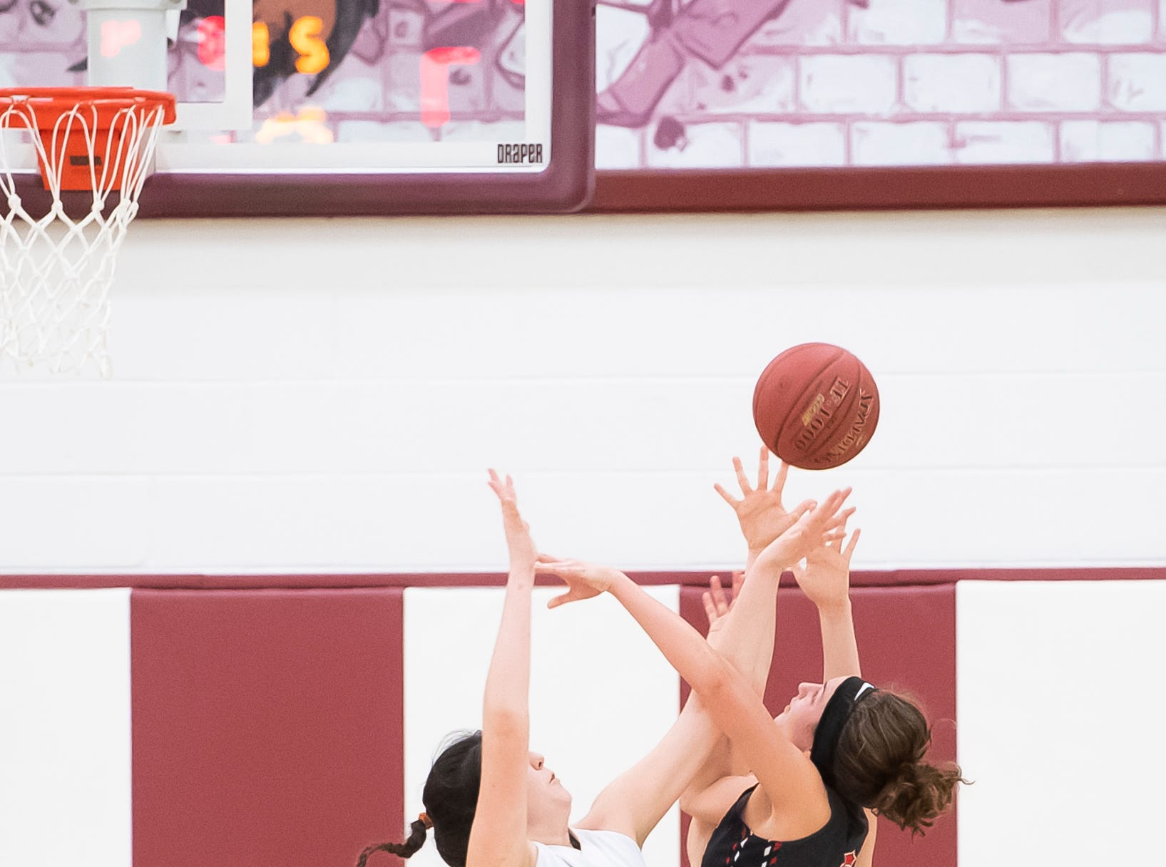 Delone Catholic's Bradi Zumbrum (40) blocks a shot from Neshannock's Isabella Burrelli during a PIAA 3A quarterfinal in Altoona, Pa., on Friday, March 15, 2019. The Squirettes won 50-41.