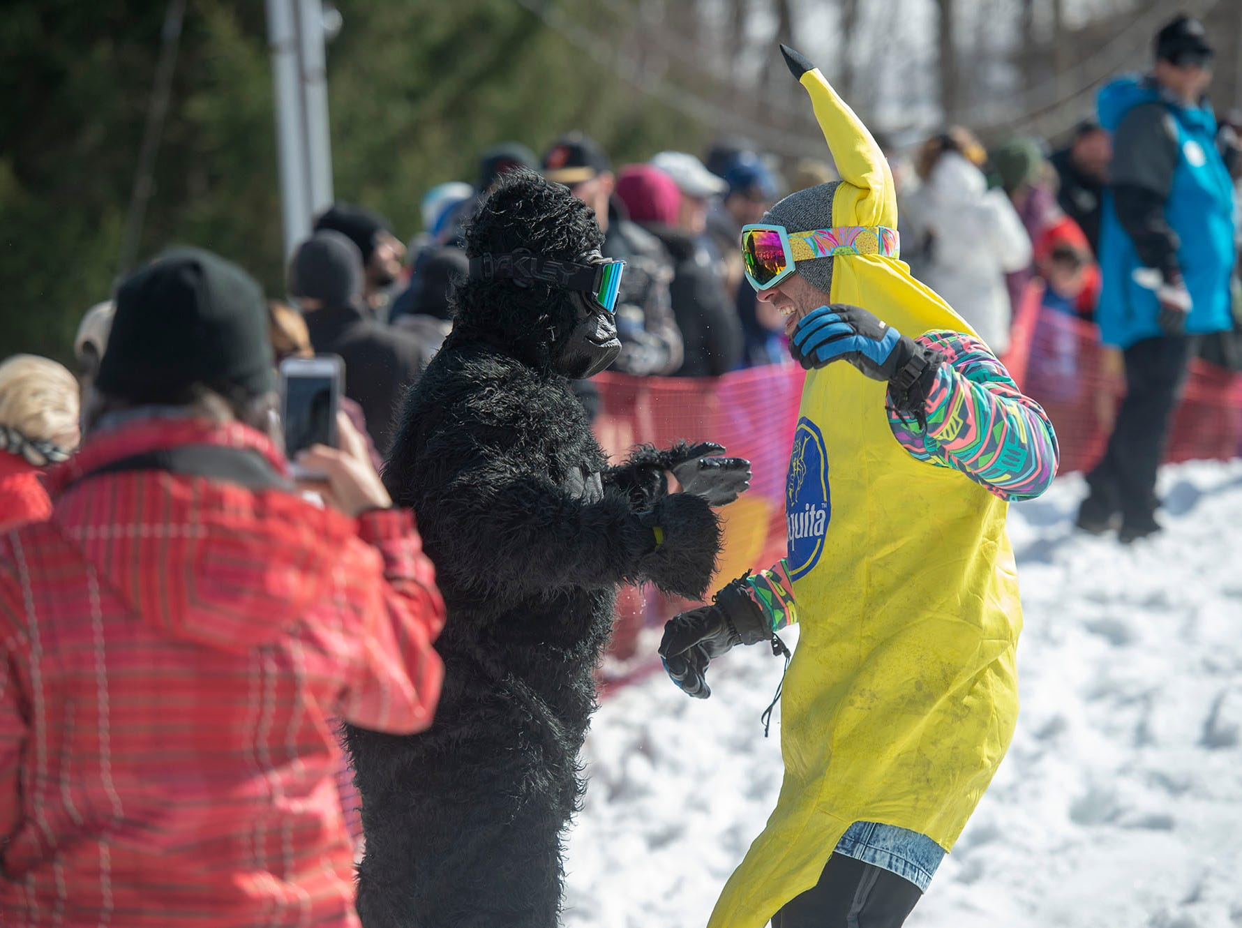 What better to follow a banana than a gorilla at Roundtop Mountain Resort on Saturday, March 16, 2019. Both made it across the pond.