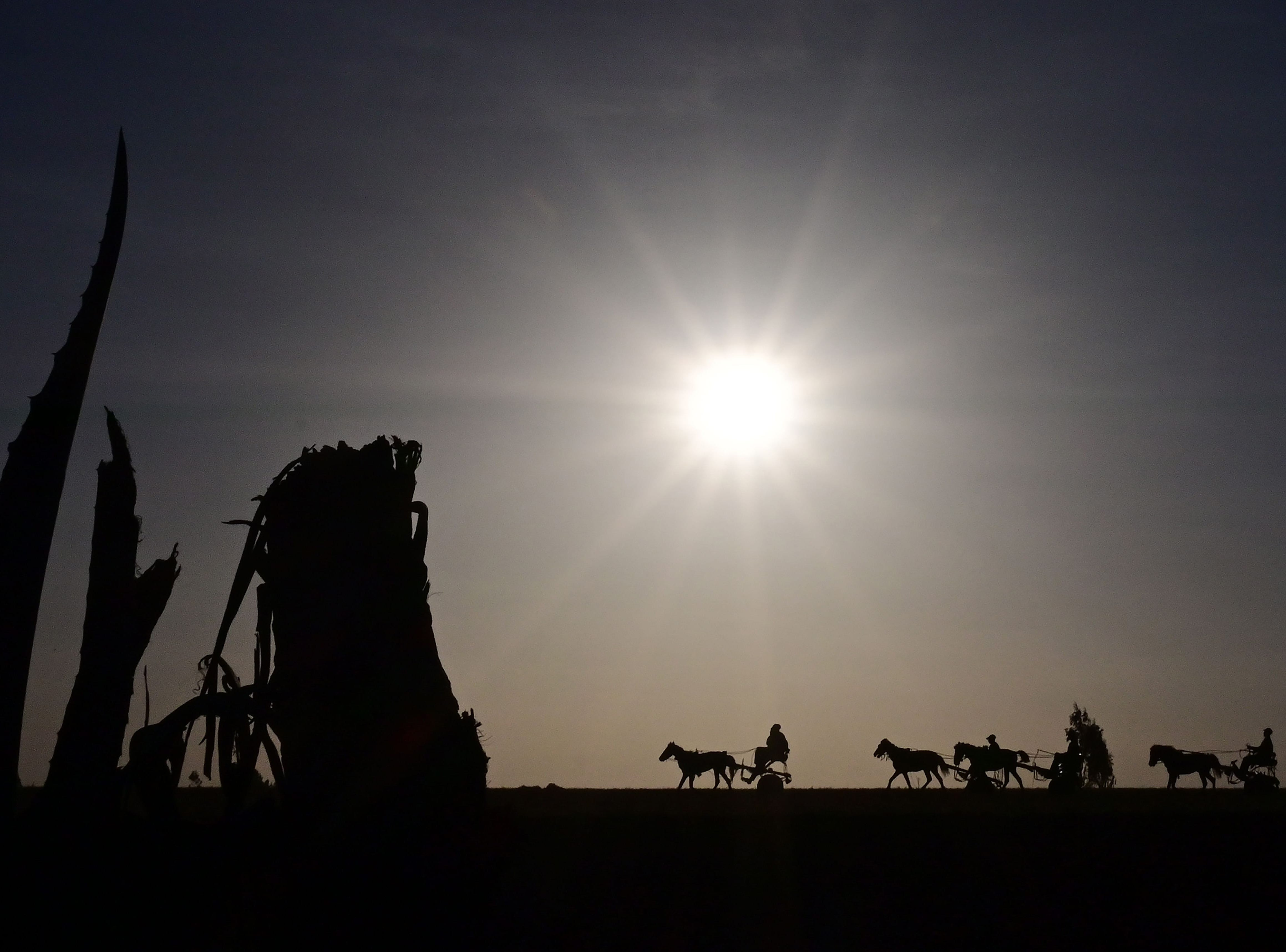 Horse-drawn taxis are silhouetted as they head to collect fares at the crash site of the Ethiopian airways operated by a Boeing 737 MAX aircraft on March 16, 2019 at Hama Quntushele village near Bishoftu in Oromia region.