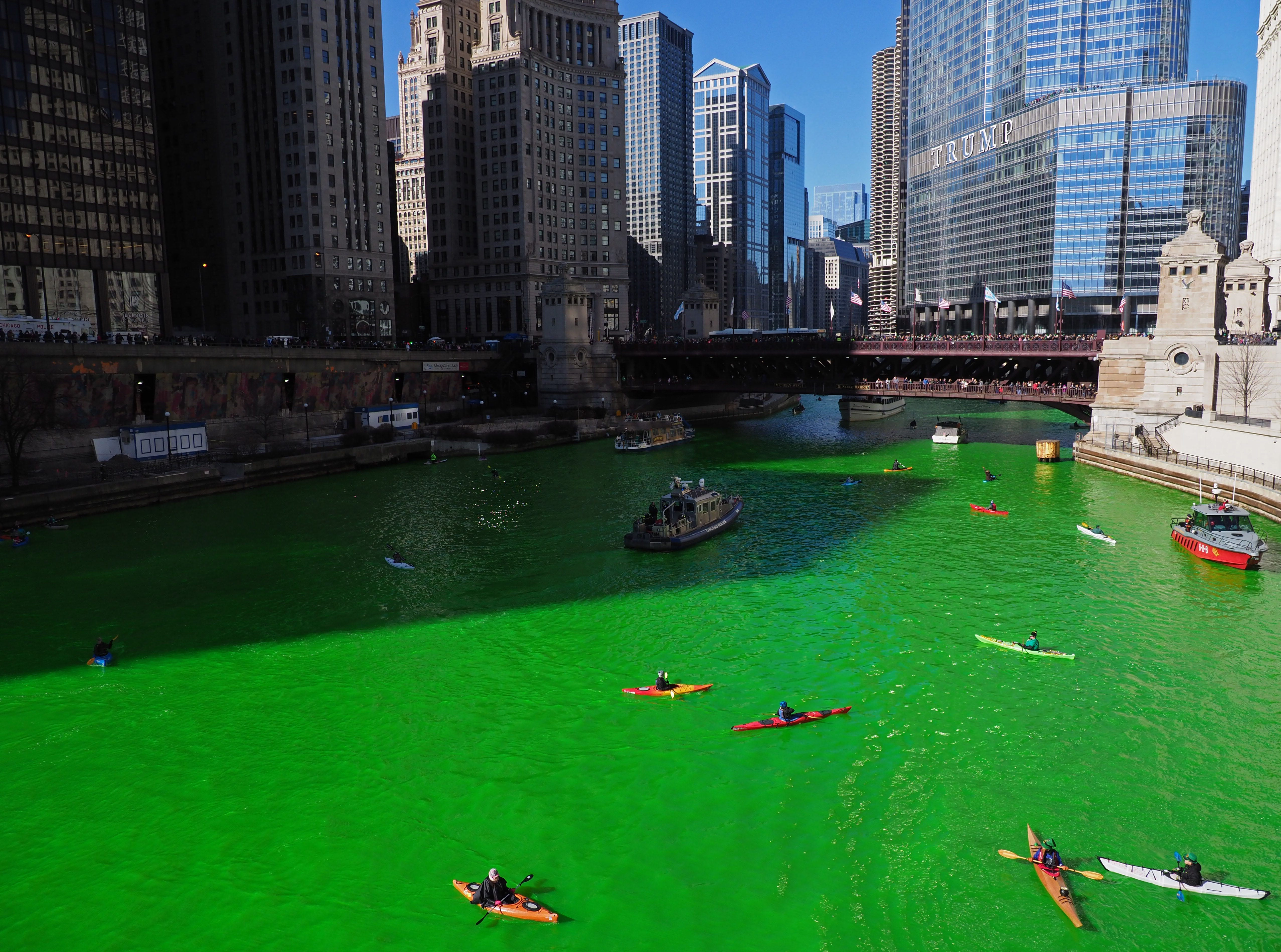 Kayakers make their way up the Chicago River after the river was dyed green in celebration of St. Patrick's Day.