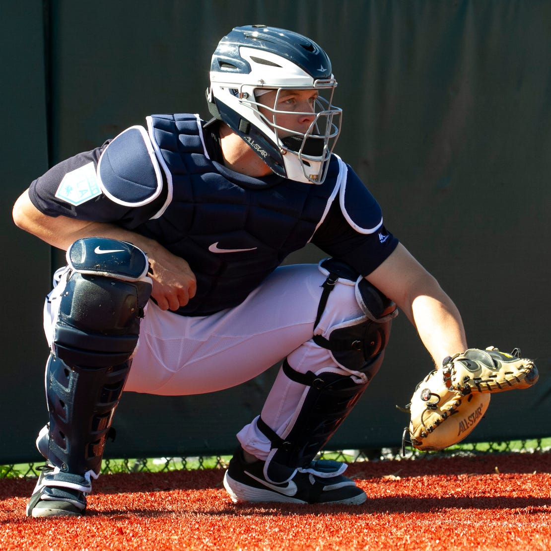 Taking charge: Tigers rookie Greiner starting to assert his authority behind the plate