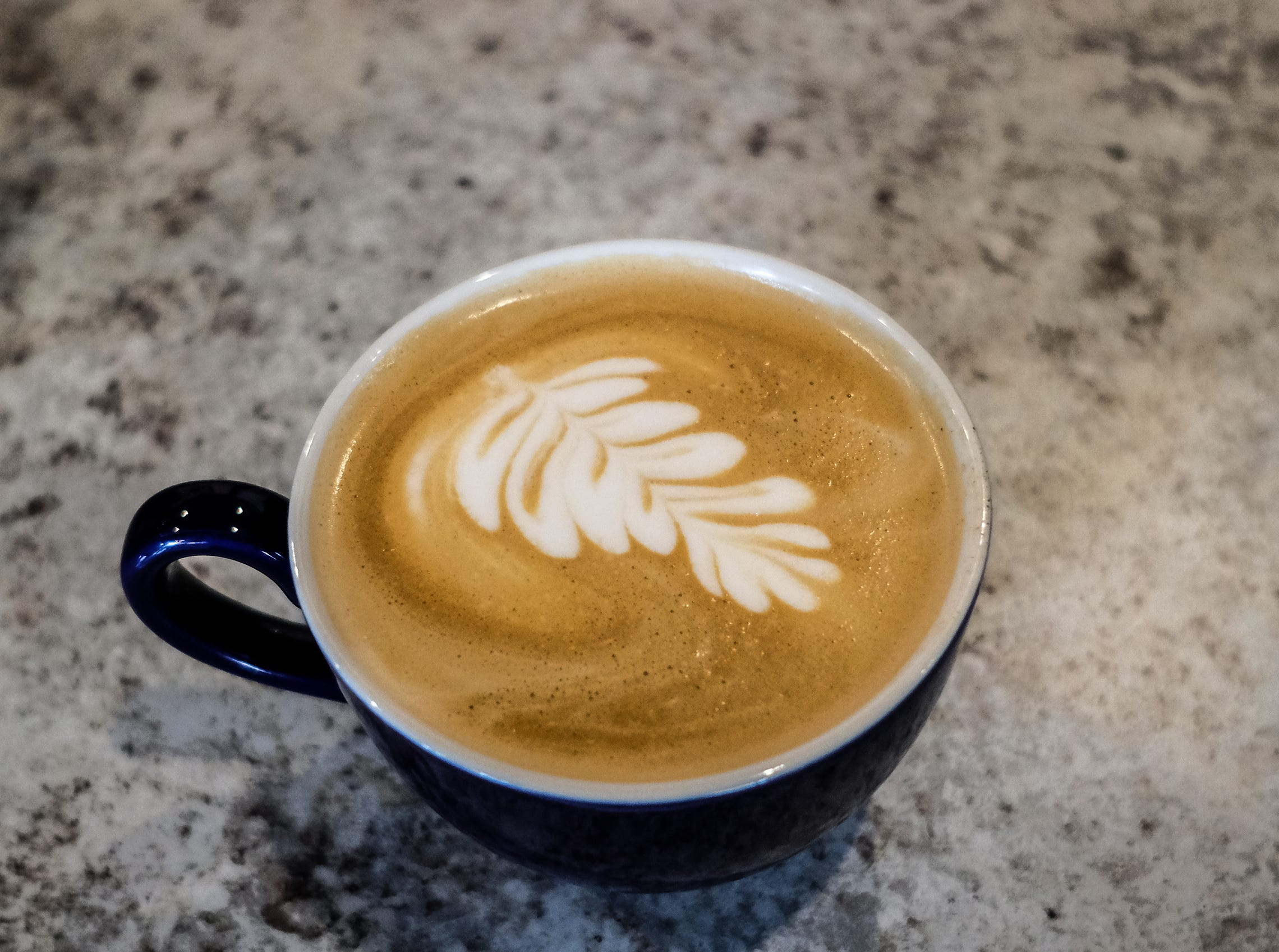 A latte with a leaf from Blue Owl Coffee Company in East Lansing.