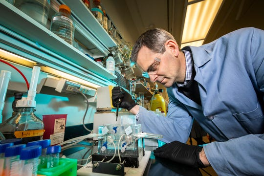 Chemistry professor Martin Burke continues his research on mechanisms that control the processes that affect cystic fibrosis in his labs at Roger Adams Laboratory at the University of Illinois at Urbana-Champaign.
