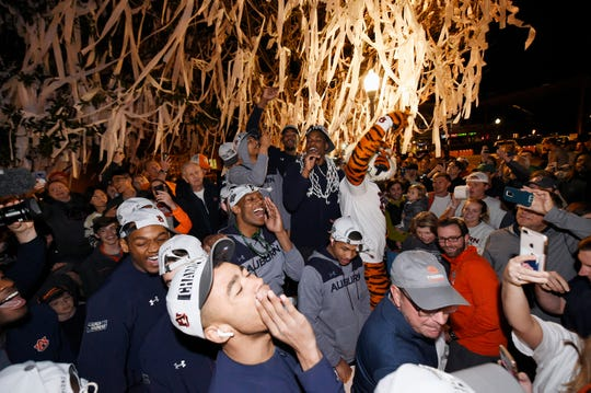 Auburn players celebrate at Toomer's Corner after winning the SEC Tournament championship on Sunday, March 17, 2019 in Auburn, Ala.
