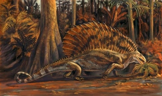 An artist rendering of what gordodon may have looked like.