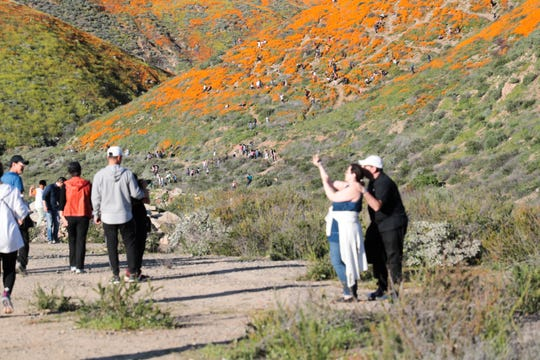 Crowds walk in Walker Canyon in Lake Elsinore, Calif. to view the poppy fields on Saturday, March 16, 2019.