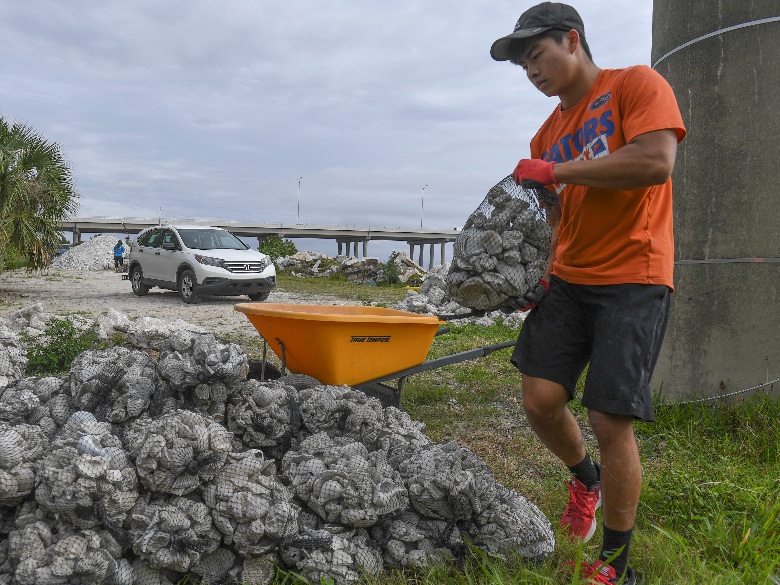 Students volunteer to help during the Ocean Research & Conservation Association's (ORCA) shell bagging day for the Living Lagoon Program on Monday, March 18, 2019, along the shore of the Indian river Lagoon at the southwest corner of the Alma Lee Loy Bridge behind the water treatment plant, in Vero Beach. The program is about actively restoring the Indian River Lagoon through habitat restoration. Information on how to volunteer can be found at www.teamorca.com.
