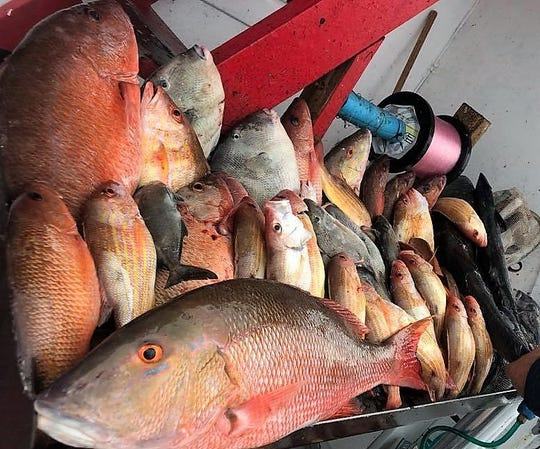 It was a full fish box for anglers aboard Fort Pierce Lady Saturday.
