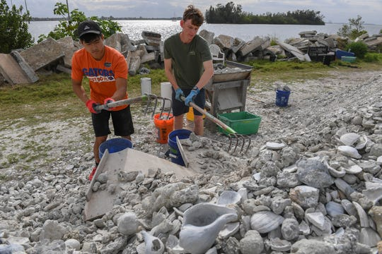 Vero Beach High School seniors (from left) Chris In, 17, and Logan Votzi, 18, volunteer during spring break, to help make shell bags, on Monday, March 18, 2019, along the shore of the Indian River Lagoon at the southwest corner of the 17th Street Alma Lee Loy Bridge behind the water treatment plant, during the Ocean Research & Conservation Association's (ORCA) shell bagging day for the Living Lagoon Program. The program is about actively restoring the Indian River Lagoon through habitat restoration and education.