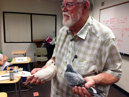 Drew Lobenstein shows his pigeons to students in his communications class at Moorpark College, where he has taught for more than three decades. Lobenstein is internationally known for his skills with pigeon breeding and was recently among a panel of six judges at the United Pigeon Fanciers Show in India.