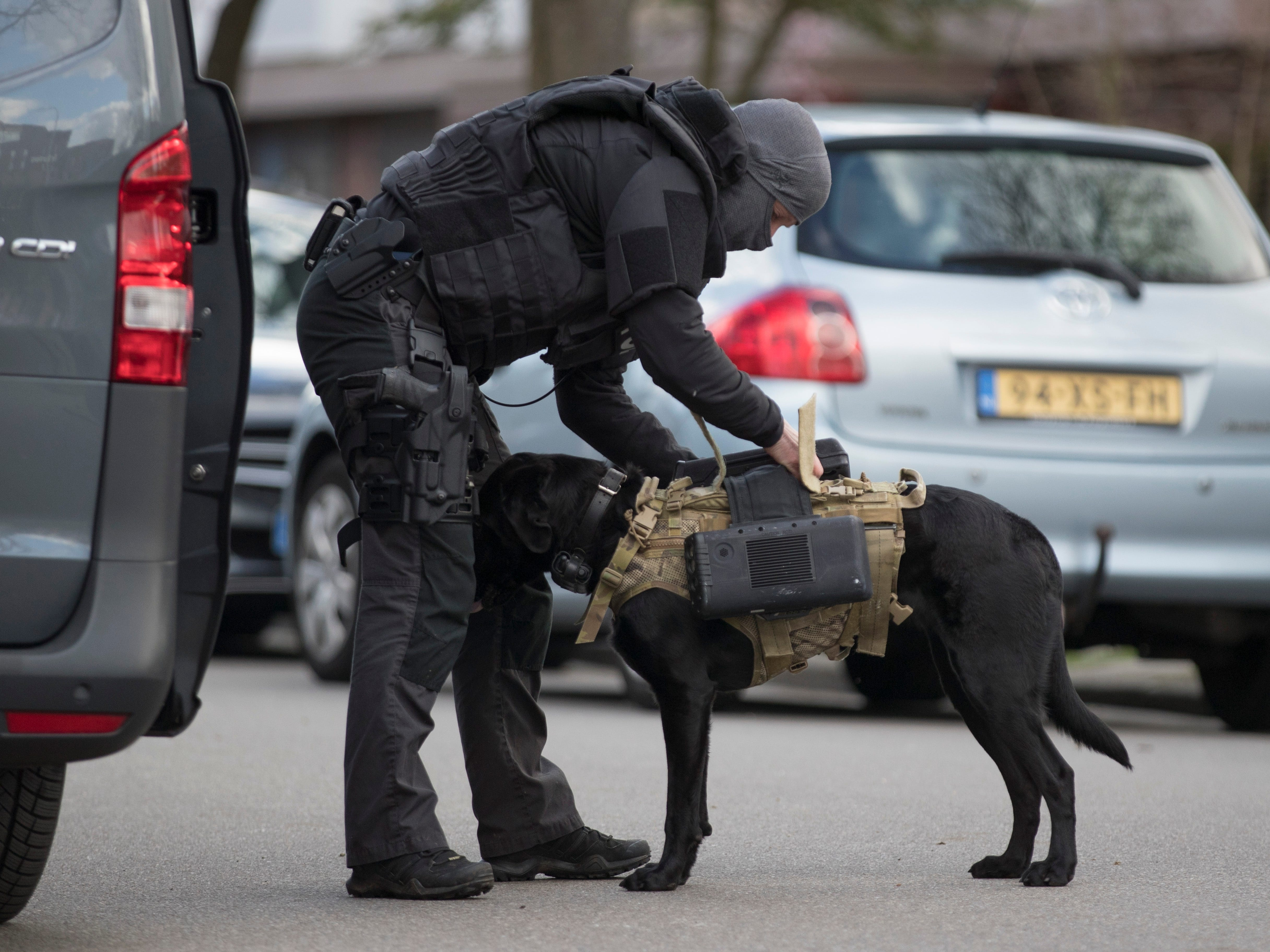 Dutch counter terrorism police install a camera on a sniffer dog as they prepare to enter a house after a shooting incident in Utrecht, Netherlands, March 18, 2019.